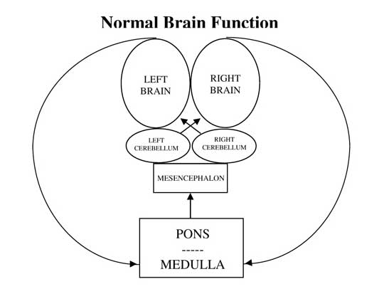 Chronic Pain Dacula GA Functional Neurology Normal Brain Function